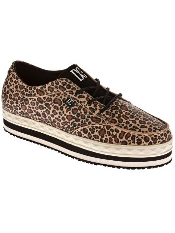DC DC Creeper Shoes
