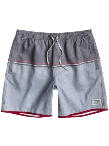 DC Favour 2 Boardshorts