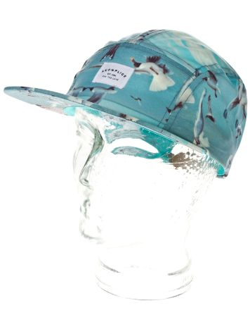 akomplice Birds Heaven 5 Panel Cap